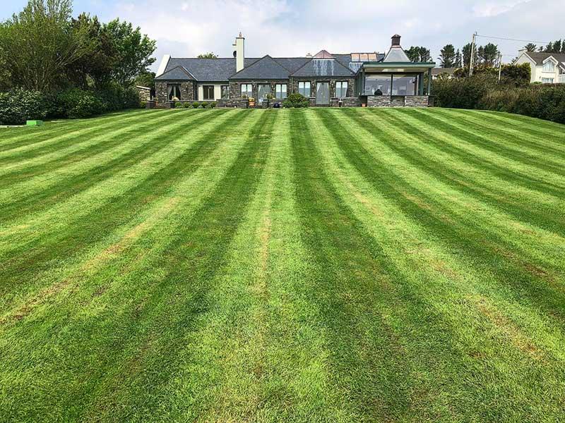 Stripped Lawn