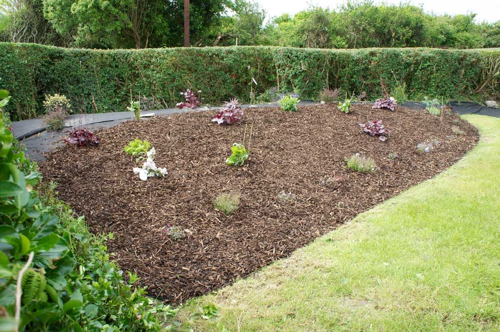 Bark mulched flower bed