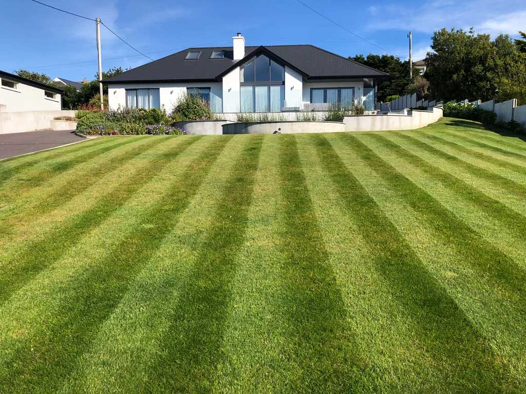 Finished maintained lawn 2