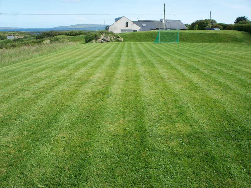 Lawn Scarifying & Aerating